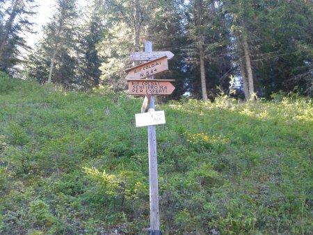 Lago coldai cima coldai rifugio coldai escursione dai for Piani artigiani per lotti stretti